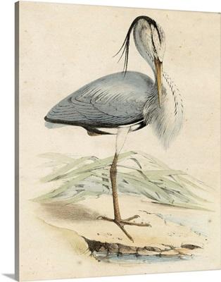 Antique Heron IV