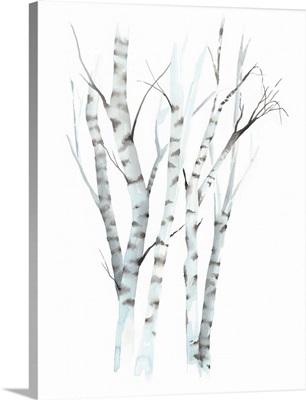 Aquarelle Birches II