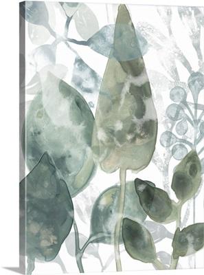 Aquatic Leaves II
