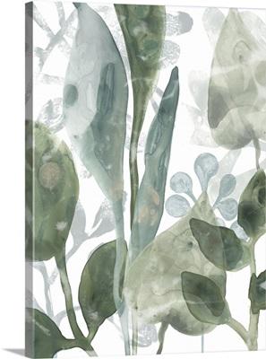 Aquatic Leaves III