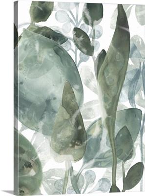 Aquatic Leaves IV