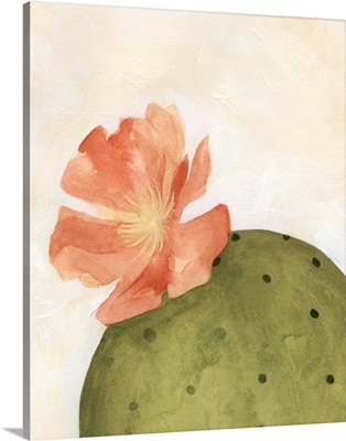 Arid Bloom I