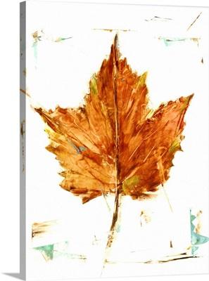 Autumn Leaf Study I