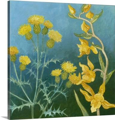 Azure Blooms II