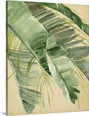 Banana Palms I