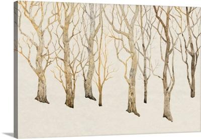 Bare Trees II