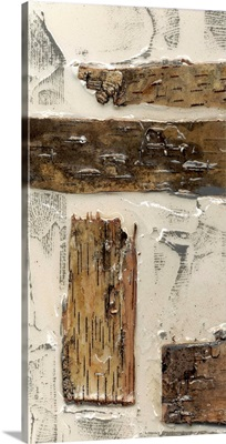 Birch Bark Abstract I
