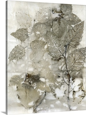 Birch Leaves I