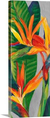 Bird of Paradise Triptych II