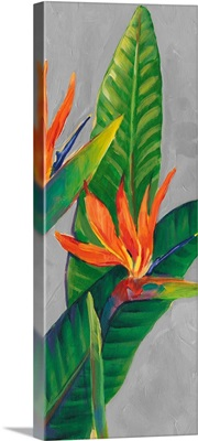 Bird of Paradise Triptych III