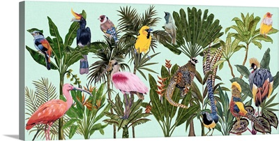 Birds Paradise V