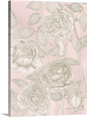 Blooming Roses II