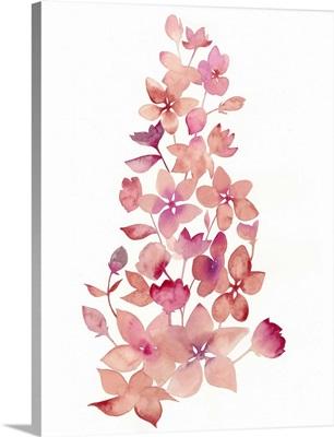 Blossom Falls I