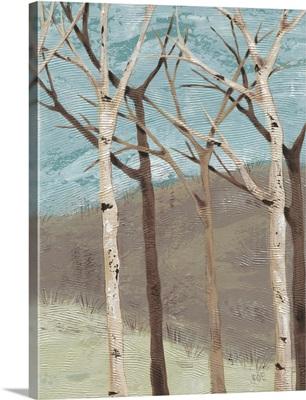 Blue Birches II