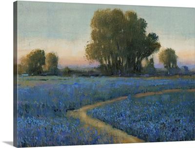 Blue Bonnet Field I