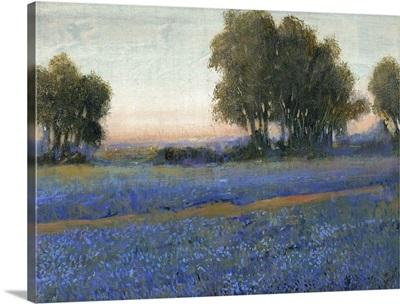 Blue Bonnet Field II