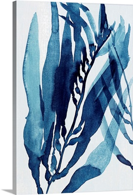 Blue Drift II