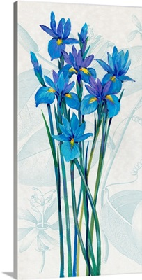 Blue Iris Panel I