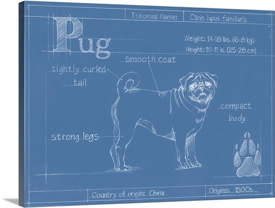Blueprint Wall Art blueprint pug wall art, canvas prints, framed prints, wall peels