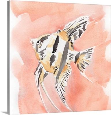 Blush And Ochre Angel Fish II