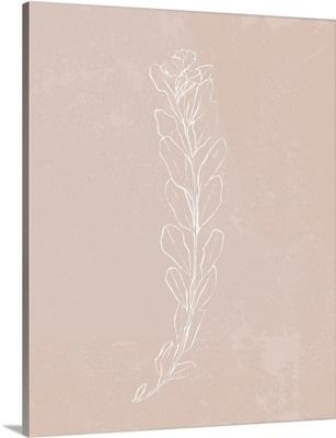 Blush Bloom II