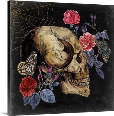 Bones II