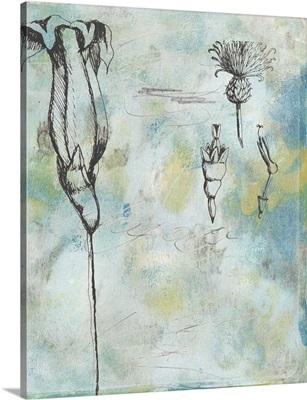 Botanical Abstract II