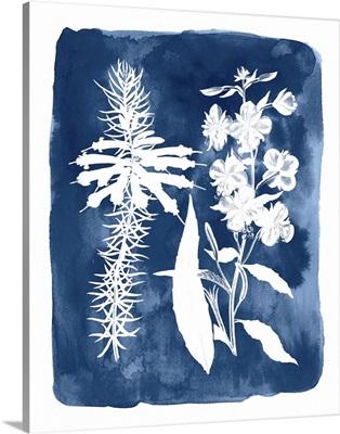 Botanical Inverse I