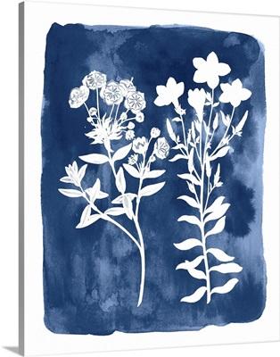 Botanical Inverse II