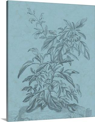 Botanical on Teal III