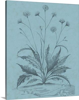 Botanical on Teal IV