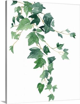 Branch Study I