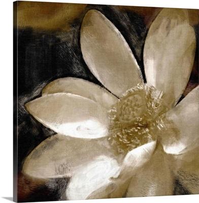 Bronze Lily I