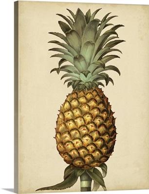 Brookshaw Antique Pineapple I