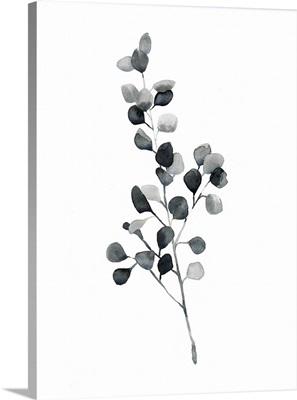 Brume Botanical III