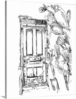 Cactus Door VI