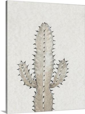 Cactus Study I