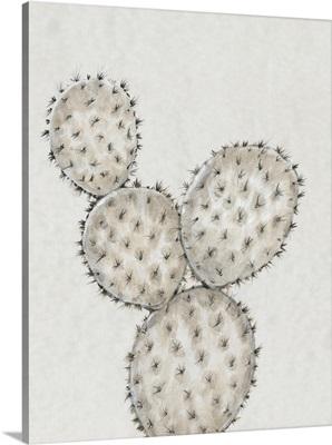 Cactus Study IV