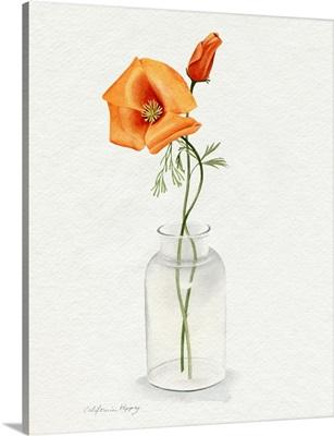 California Poppy Vase I