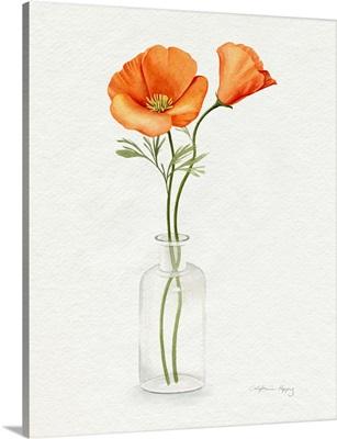 California Poppy Vase II