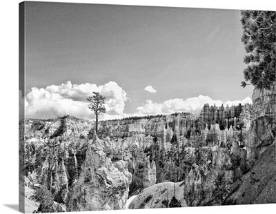 Canyon Lands VI