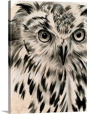 Charcoal Owl I