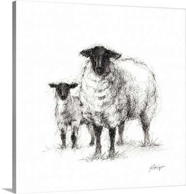Charcoal Sheep Study I