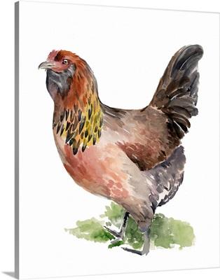 Chicken Dance II