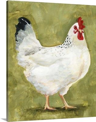 Chicken Scratch III