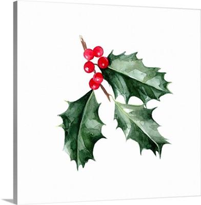 Christmas Holly I