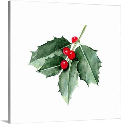 Christmas Holly II