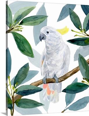 Cockatoo Perch II