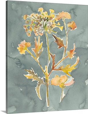 Collected Florals I
