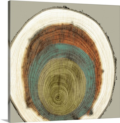 Colored Rings II